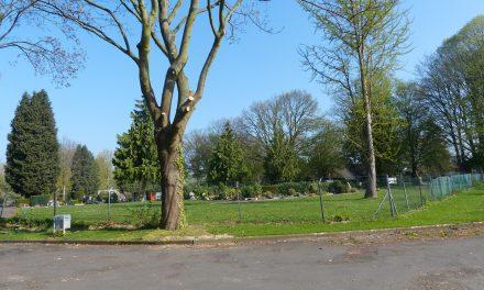 Einfriedung Friedhof Brauweiler wiederherstellen