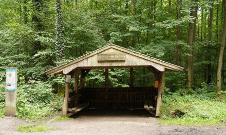 Der Dansweiler Hütte geht es nicht gut